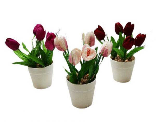 Изкуствено цвете в бяла пвц саксия 5 лалета на Промо Цена с Бърза Доставка, Мнения, Препоръки, Клиентски Ревюта и Отзиви от Saksiika.com